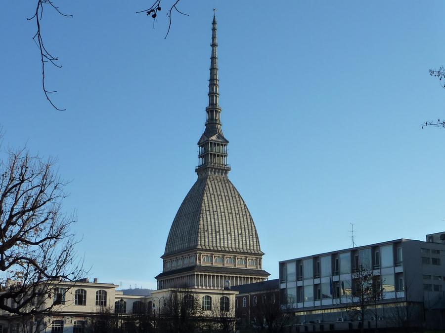 La Città di Torino avrà un disability manager