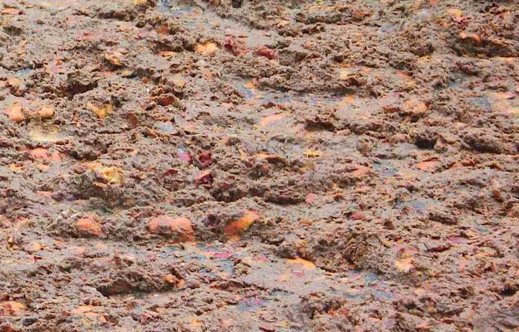 Le arance del carnevale di Ivrea: da rifiuti a compost in vendita allo stand del Carnevale e al Villaggio Arancio