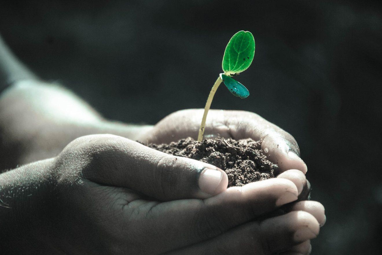 Una legge d'iniziativa popolare per arrestare il consumo di suolo in Italia
