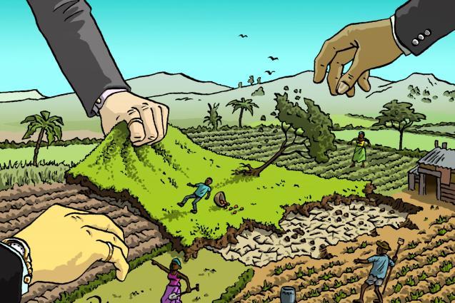 Nello scorso anno in Piemonte si è persa una superficie agraria pari a 311 campi da calcio